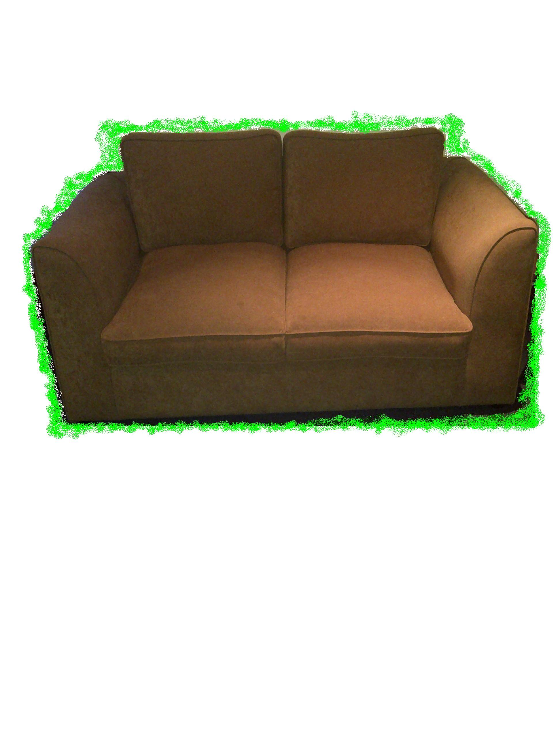 Sleeper Couch with Back Cushions
