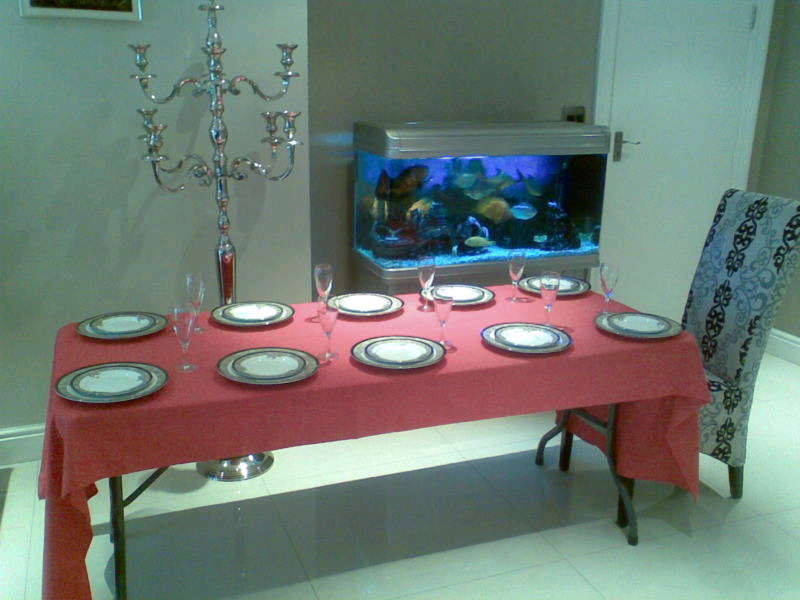 Our 8 Seater Fold Up Trestle Table Excluding Table cloth and Plates