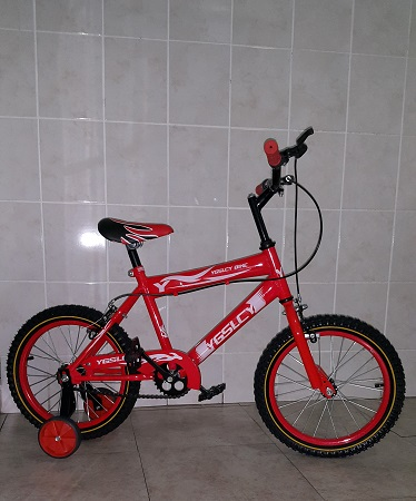16 Inch Bike in Red with Training Wheels