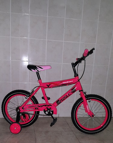 16 Inch Pink Bike with Training Wheels