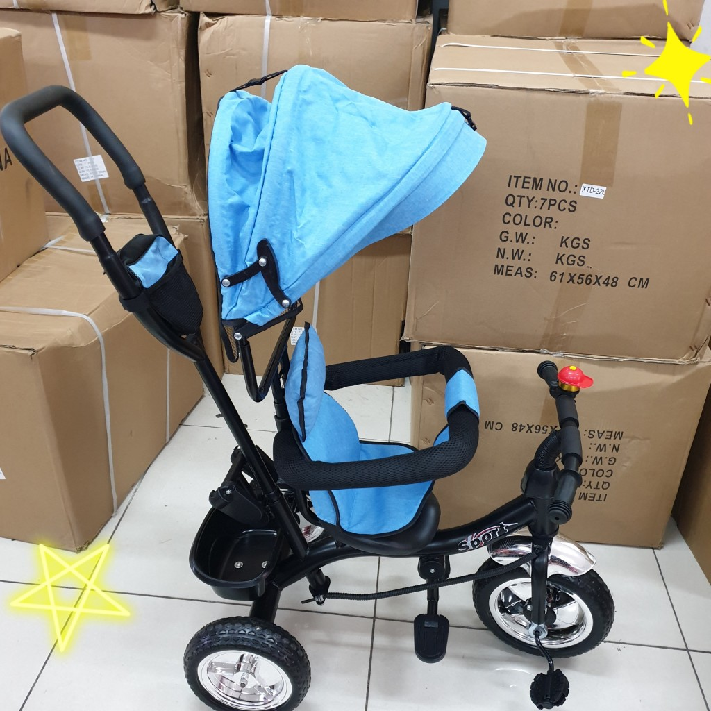 Sky Blue Tricycle Bike