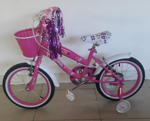 Pink 20 Inch Floral BMX Bicycle Front View