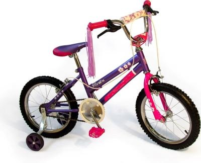 Pink and Purple 16 inch Girl Bicycle