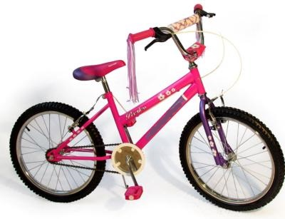 Purple and Pink 20 Inch Girl Bicycle